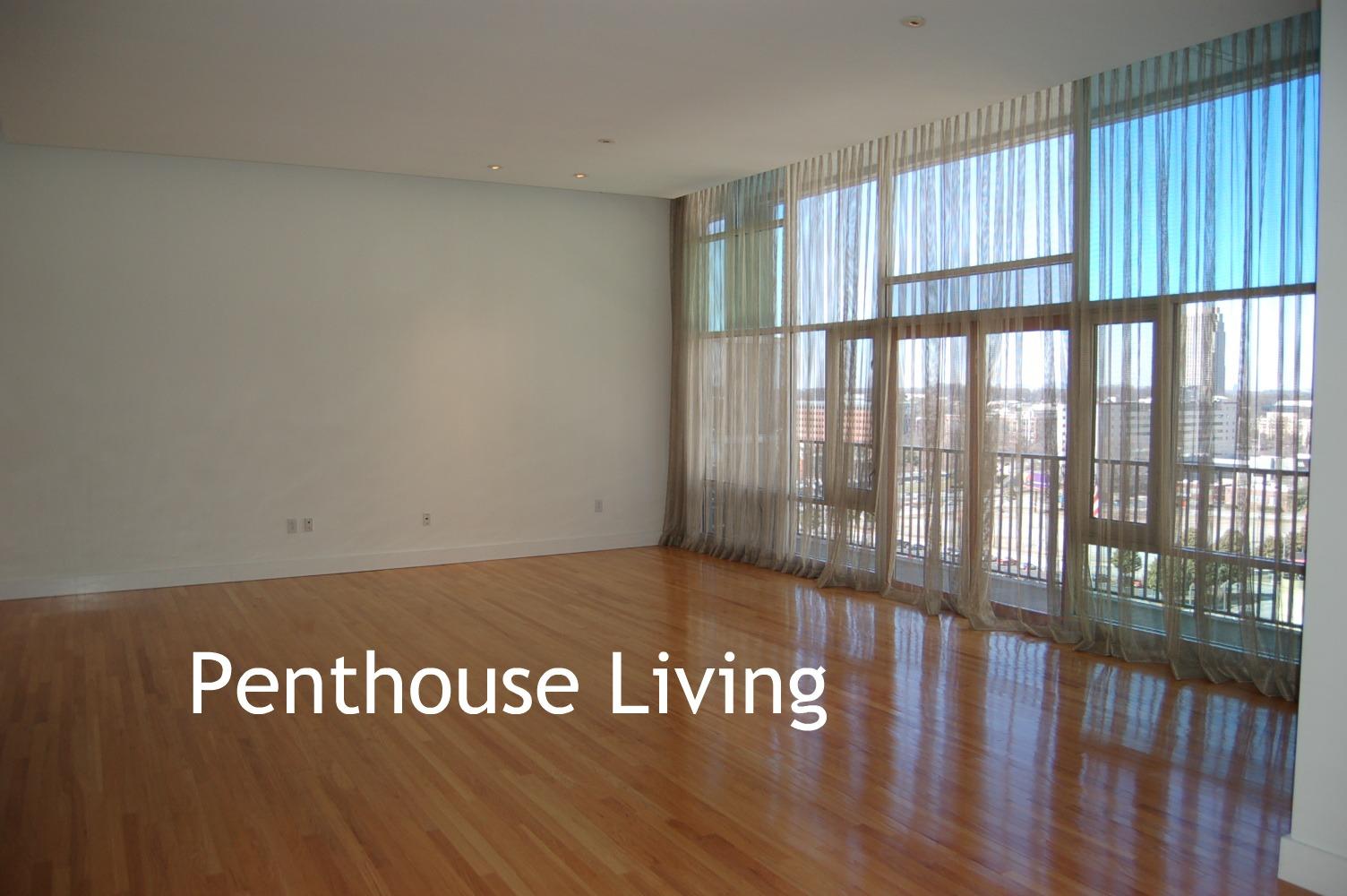 midcity lofts penthouse