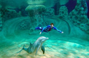 GATech Systems Engineering Improves Visitor Experience at Georgia Aquarium